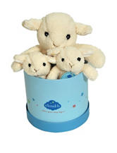 Cloud B Hugginz Sheep Gift box