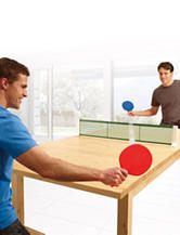 Just For Fun Tabletop Table Tennis