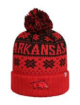 Arkansas Razorbacks Subarctic Knit Beenie