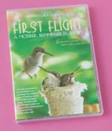 First Flight: A Mother Hummingbird's Story DVD