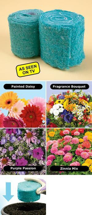 Fragrance Bouquet Flower Rocket - 2-Pack