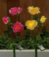 Solar-Powered Garden Roses - Pink