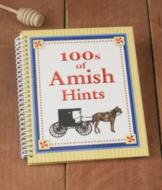 100's of Amish Hints Book