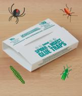 Insect Glue Traps - Set of 4