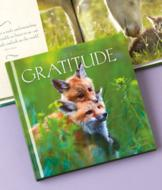 The Little Book of Gratitude
