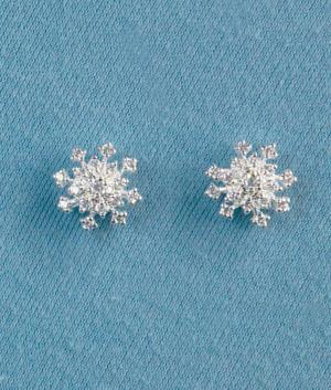 Snowflake Pierced Earrings