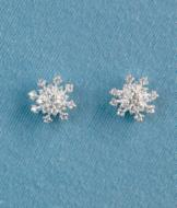 Snowflake Pierced Earrings