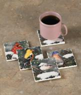 Backyard Bird Coasters - Set of 4