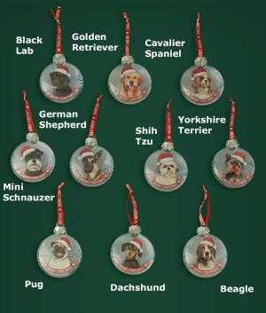 Santa Paws Dog Ornament - Each