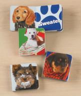 Winter Puppies Mini Books - Set of 3