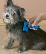 Self-Cleaning Pet Brush