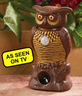 Motion-Activated Owl Alert