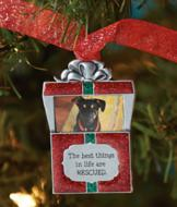 Rescue Pet Ornament