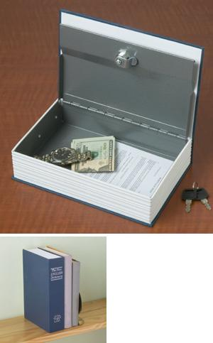 Realistic Dictionary Book Safe