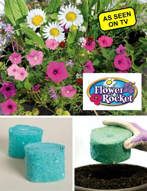 Flower Rocket - Set of 2 Rolls