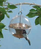 Songbird Feeder