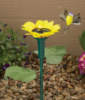 Flying Hummingbird and Sunflower Stake