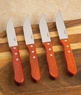 Heavy-Duty Steak Knives - Set of 4