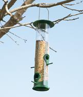 All-Season Bird Feeder