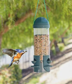 Hanging 3-Perch Bird Feeder