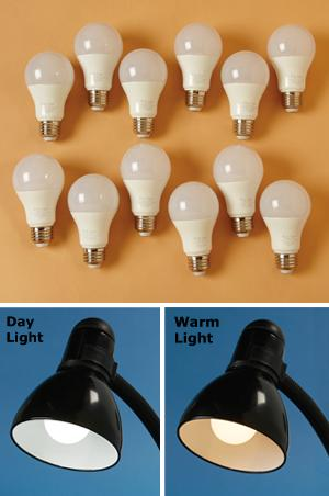 LED A-Bulb - Day Light