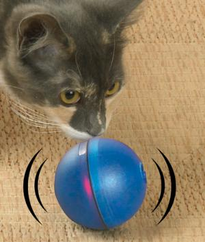 Magic LED Ball for Pets