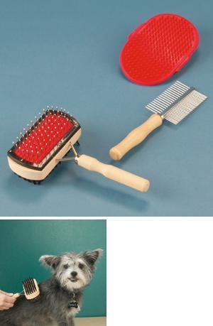 Pet Brush and Comb Set