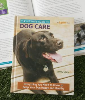 The Ultimate Guide to Dog Care - Tammy Gagne