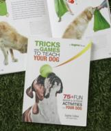 Tricks and Games to Teach Your Dog Book