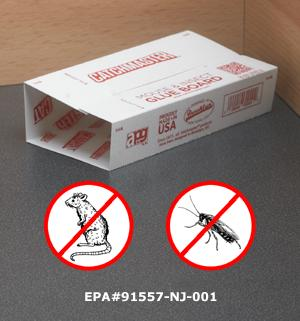 Pest Traps - Set of 12