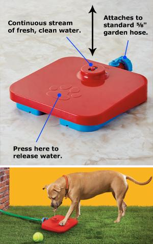 Pawcet Water Fountain for Dogs