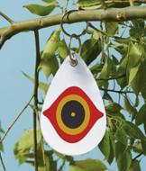 Bird Eye Discs - Set of 5