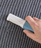 Travel Size Lint Remover
