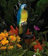 Solar Blue Parrot