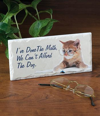 I've Done the Math... Cat Plaque
