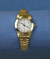 Goldtone Expansion Watch
