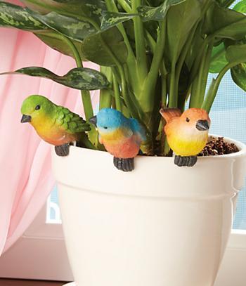 Flowerpot Birds - Set of 3