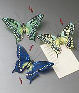 Butterfly Magnets - Set of 3
