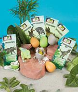 Dino Series 1 Super Grow Eggs - Set of 3