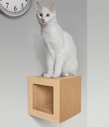 Floating Cat Shelf