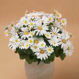 Lifelike Daisy Bouquet
