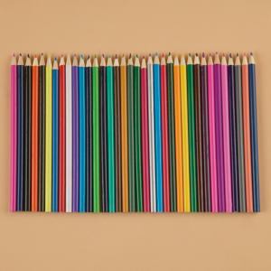 Artist-Quality Coloring Pencils - Set of 36