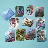 Hummingbird Blank Greeting Cards - Set of 20