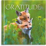The Little Book of Gratitude - Bonnie Louise Kuchler
