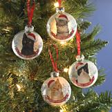 Snow Globe-Style Kitty Ornament