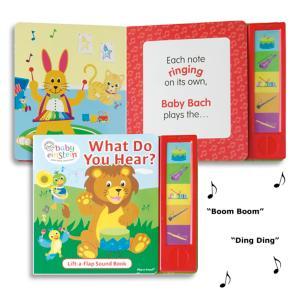 Baby Einstein What Do You Hear? Musical Sound Book