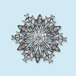 Glistening Crystal Pin/Pendant