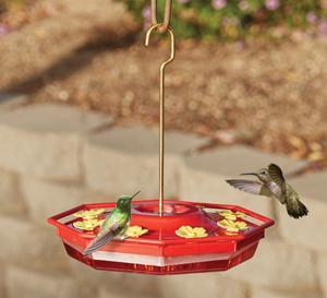 Eight Port Hummingbird Feeder
