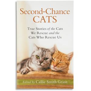 Second-Chance Cats Book