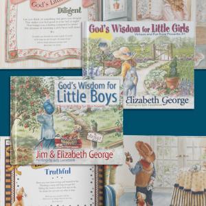 God's Wisdom - Each Book